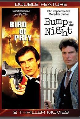 Постер фильма Хищная птица (1995)