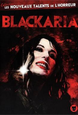 Постер фильма Чёрная ария (2010)