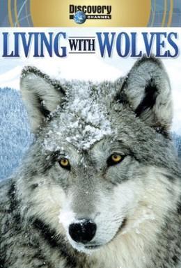 Постер фильма Жизнь с волками (2005)
