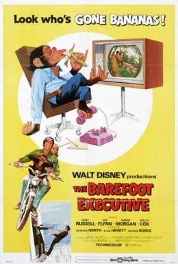 Постер фильма Босой руководитель (1995)