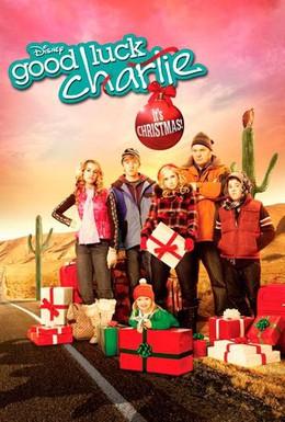 Постер фильма Держись, Чарли, это Рождество! (2011)
