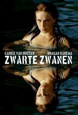 Постер фильма Черные лебеди (2005)