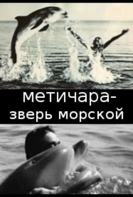 Постер фильма Метичара, зверь морской (1988)