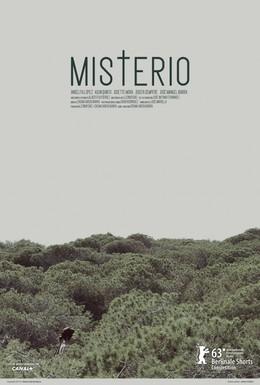 Постер фильма Тайна (2013)
