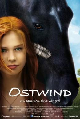 Постер фильма Восточный ветер (2013)