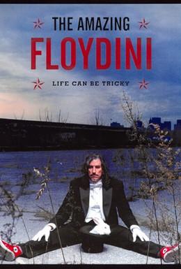 Постер фильма Невероятный Флойдини (2004)