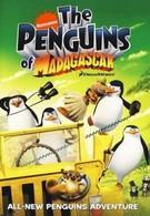 Пингвины из Мадагаскара (2011)