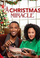 Рождественское чудо (2019)