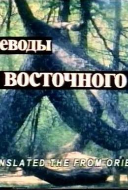 Постер фильма Переводы с восточного (1999)