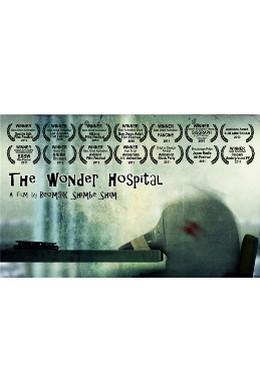 Постер фильма Чудесная больница (2010)