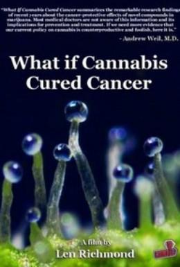Постер фильма Что если марихуана лечила бы рак (2010)