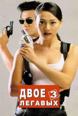 Постер фильма Два полицейских 3 (1998)