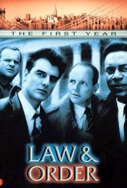 Постер фильма Закон и порядок (2005)