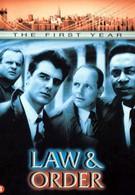 Закон и порядок (2005)