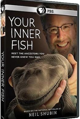 Постер фильма Внутренняя рыба (2014)