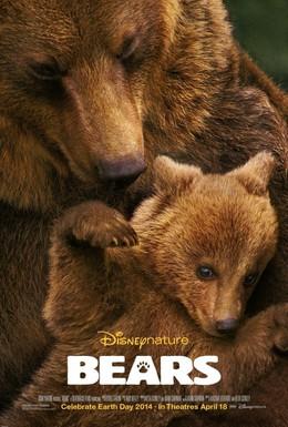 Постер фильма Медведи (2014)