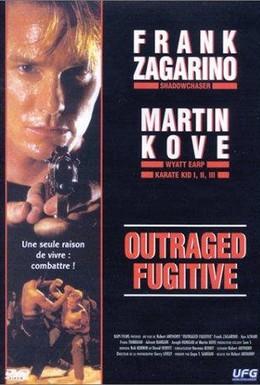 Постер фильма Разгневанный беглец (1995)