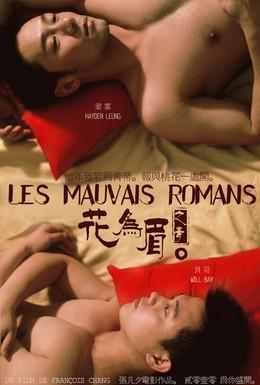 Постер фильма Неважный роман (2011)