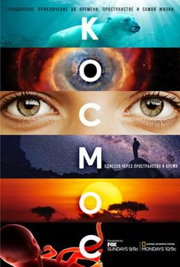 Постер фильма Космос: Пространство и время (2014)