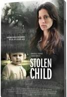 Похищенный ребёнок (2012)