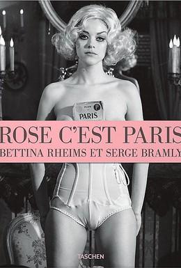 Постер фильма Роз, это Париж (2010)