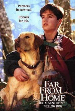 Постер фильма Далеко от дома: Приключения желтого пса (1995)