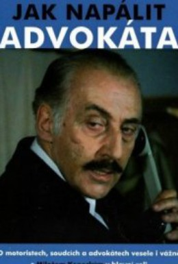 Постер фильма Как надуть адвоката (1980)