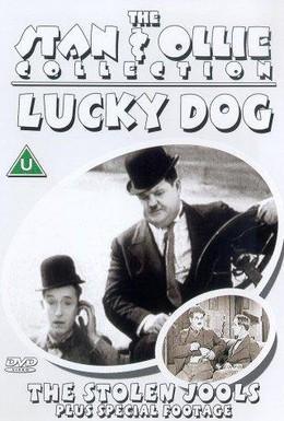 Постер фильма Украденные драгоценности (1931)