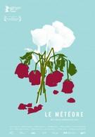 Метеор (2013)