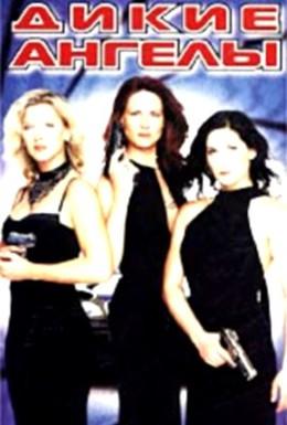 Постер фильма Дикие ангелы (2002)