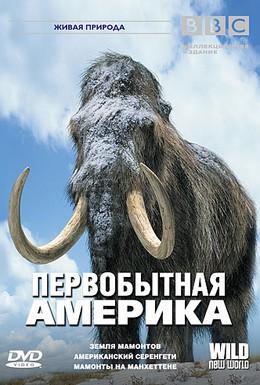 Постер фильма BBC: Первобытная Америка (2002)