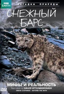 Постер фильма BBC: Снежный барс: Мифы и реальности (2007)