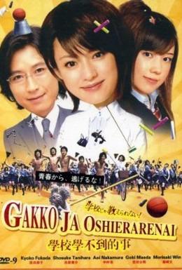 Постер фильма Такому в школе не научат! (2008)