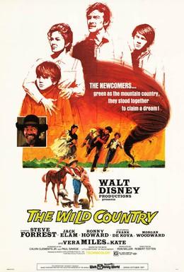 Постер фильма Повеса за городом (1970)