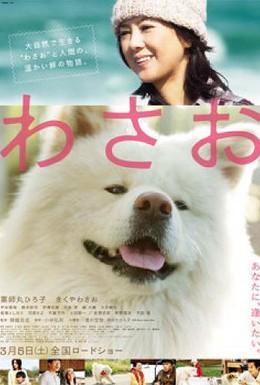 Постер фильма Васао (2011)