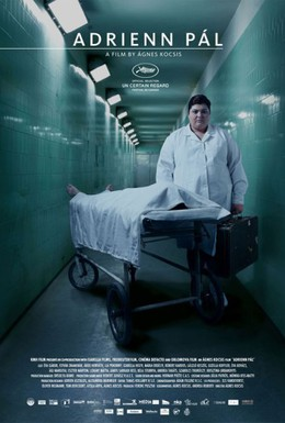 Постер фильма Пал Адриенн (2010)