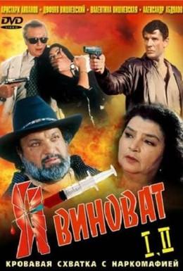 Постер фильма Я виноват (1993)