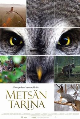 Постер фильма Чудесный лес (2012)