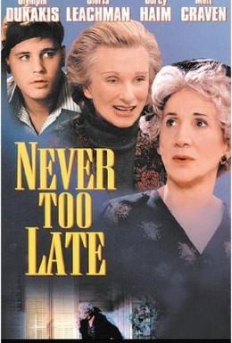 Постер фильма Никогда не поздно (1996)