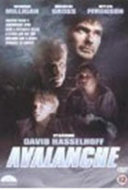 Постер фильма Лавина (1994)
