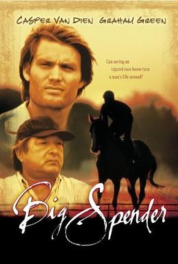 Постер фильма Возвращение чемпиона (2003)