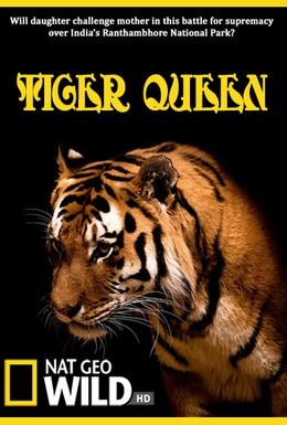 Постер фильма Королева тигров (2010)