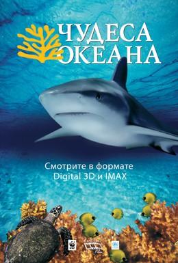 Постер фильма Чудеса океана 3D (2003)