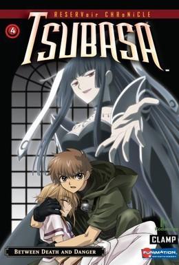 Постер фильма Хроника крыльев (2005)