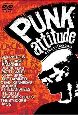 Постер фильма Угол зрения: История панк-рока (2005)