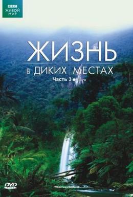 Постер фильма BBC: Жизнь в диких местах (2008)