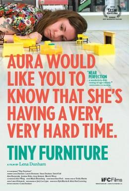Постер фильма Крошечная мебель (2010)