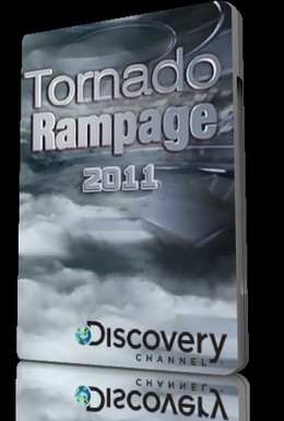 Постер фильма Неистовый торнадо (2011)