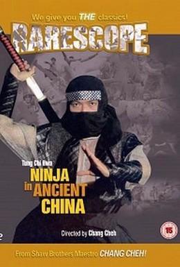 Постер фильма Ниндзя в древнем Китае (1993)