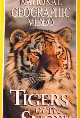 Постер фильма НГО: Сибирские тигры (1997)